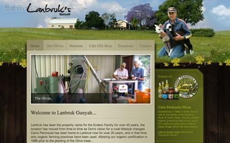漂亮的使用草地的網站設計欣賞