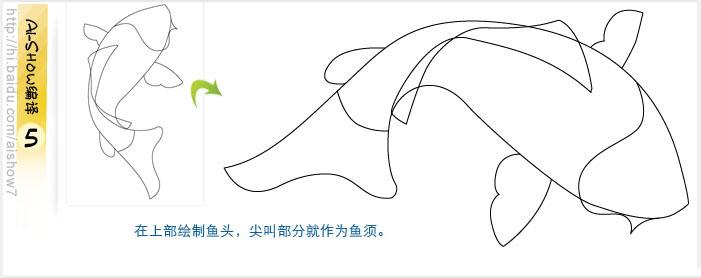 鲤鱼简笔画步骤画法
