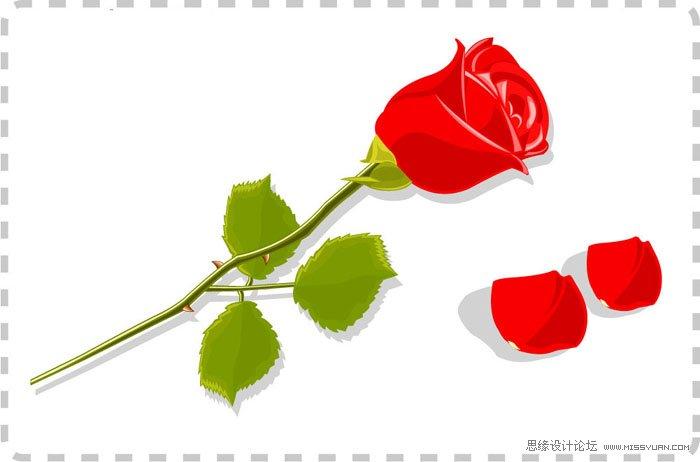 ps免抠玫瑰素材