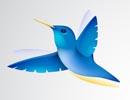 Illustrator制作可爱的蜂鸟教程