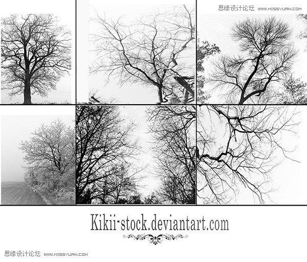 精致的枯树和树木笔刷