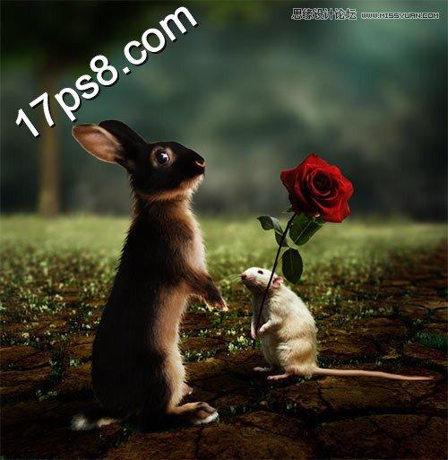 photoshop合成温馨的情人节动物求爱场景