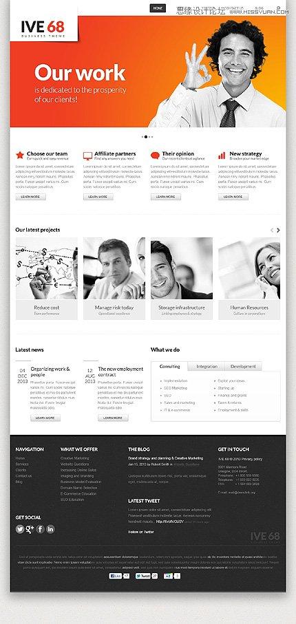 2013年最好的国外优秀网站模版推荐图片
