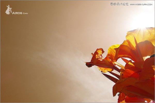 亚洲必赢app官方下载 5