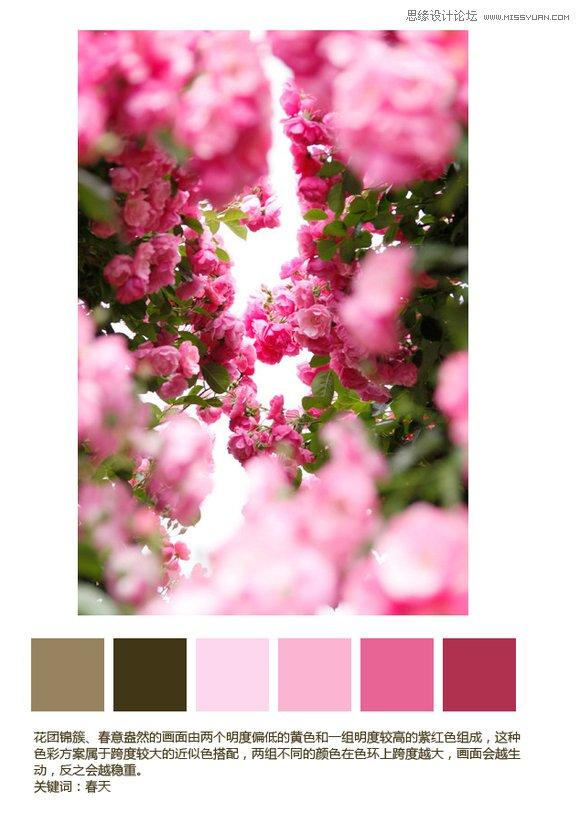 10個從圖片中提取的色彩方案分析
