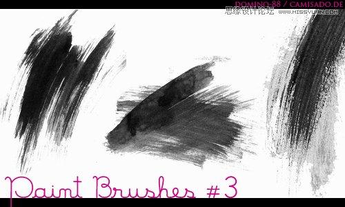 [ PSブラシ ]伝統的なインクおよび洗浄絵画ブラシの跡