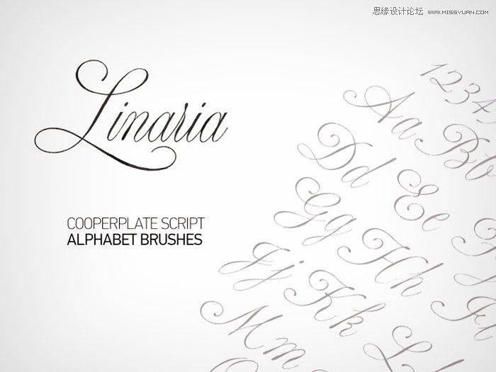 漂亮的手写英文字母和数字笔刷