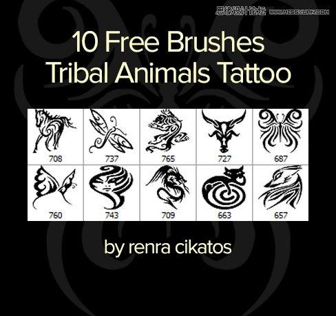 时尚的蝴蝶和龙纹纹身花纹笔刷