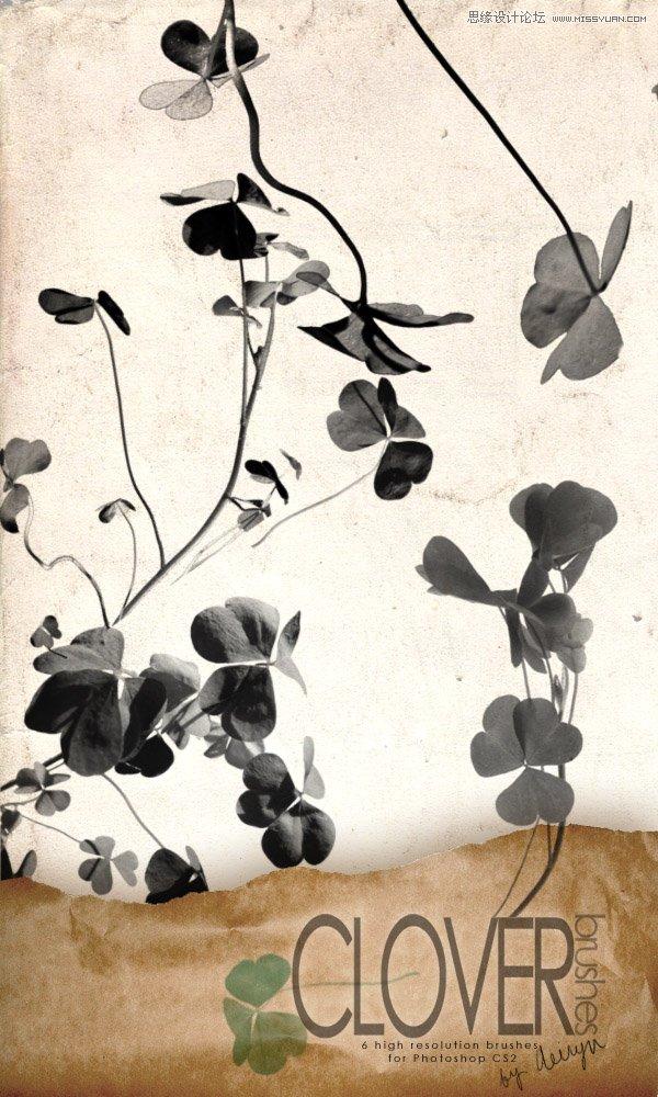 手绘线条花朵装饰笔刷 10款丝状烟雾装饰效果笔刷 时尚手绘花纹藤蔓