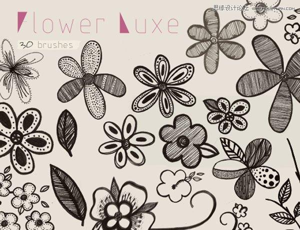 美丽的手绘花朵装饰笔刷 炫彩手绘图案字母设计笔刷 手绘线条花朵装饰