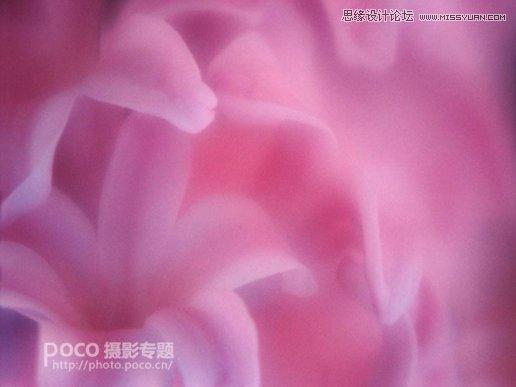 Photoshop合成唯美的花朵人像效果图,PS教程