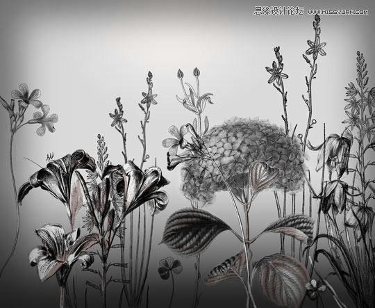 漂亮的手绘cg美女头发笔刷 时尚的手绘花纹和花朵笔刷 高清晰手绘鲜花