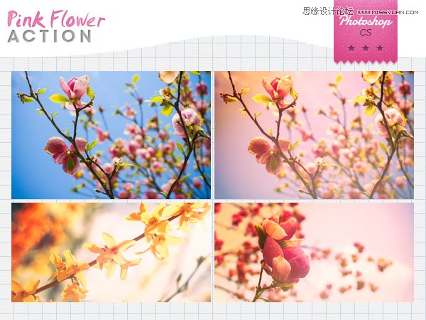 静物照片唯美粉色效果调色动作