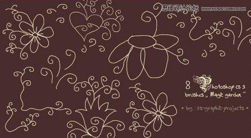 手绘线描花朵和花纹装饰笔刷图片