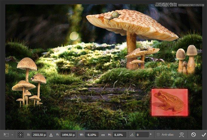 photoshop合成魔幻风格的森林公主教程