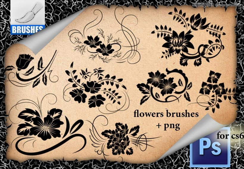 时尚的花朵花纹藤蔓笔刷