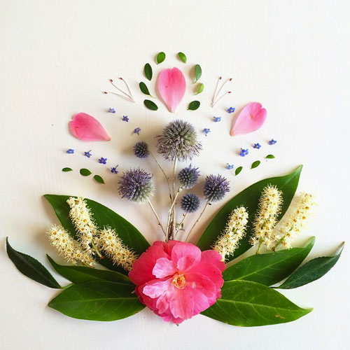 以花菌草木为主题的创意作品欣赏