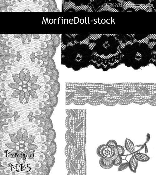 复古风格的蕾丝边框和花朵ps笔刷