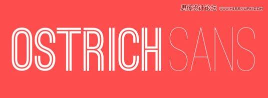 23款国外优秀时尚的顶尖英文字体打包下载