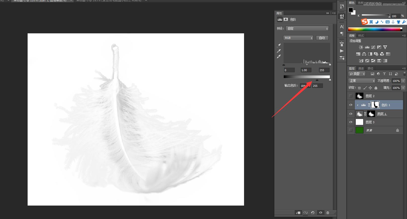Photoshop巧用色阶快速的抠出羽毛效果图