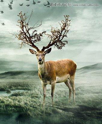 photoshop合成童话世界的小女孩场景海报(2)