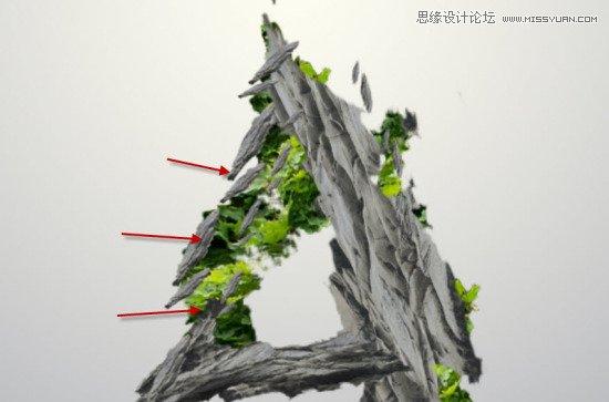 常绿树叶矢量图片