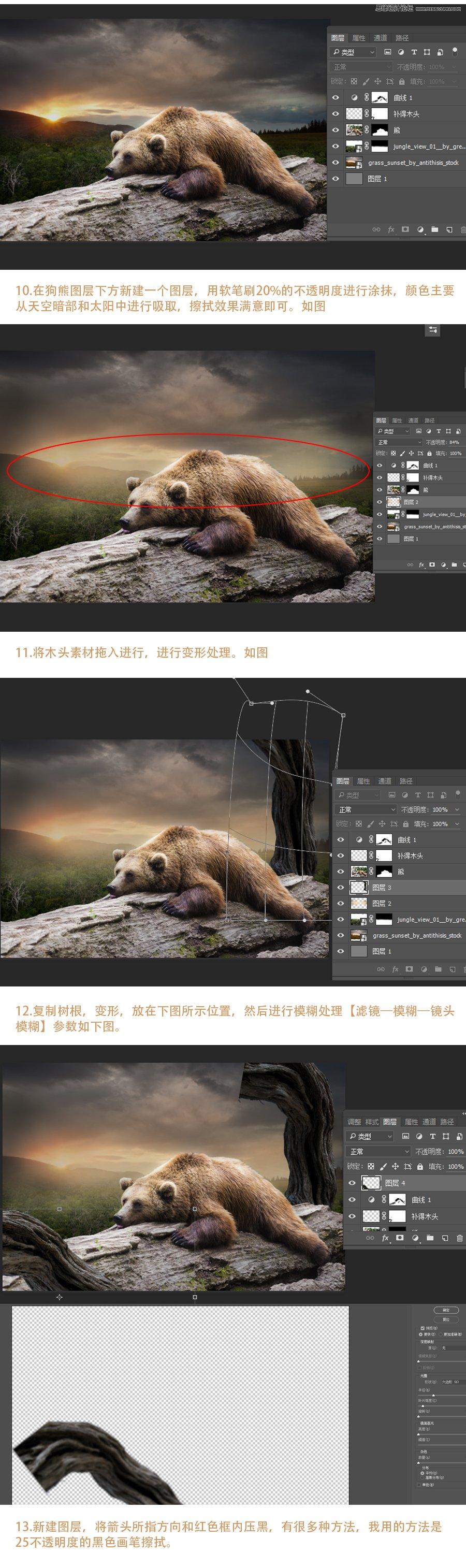 Photoshop合成森林中騎在熊上的小男孩