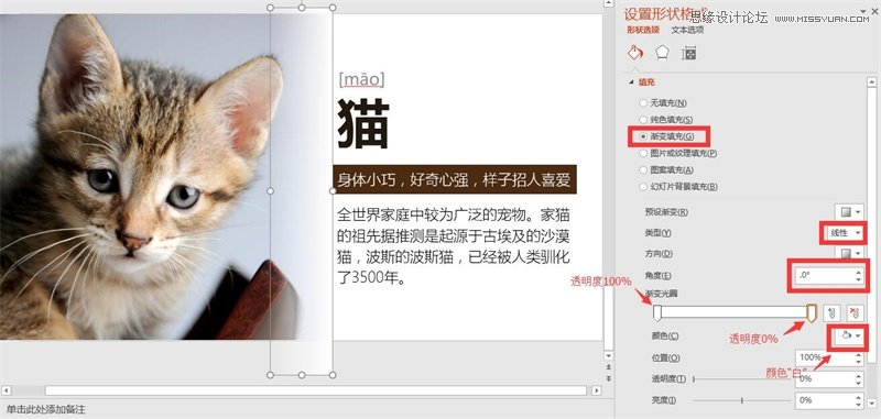 710官方网站 15
