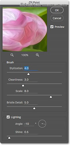 Photoshop實例講解CC版本的油畫濾鏡