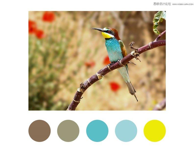 設計師如何從大師的作品中借鑒配色靈感