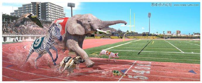 photoshop合成动物界运动会赛跑场景