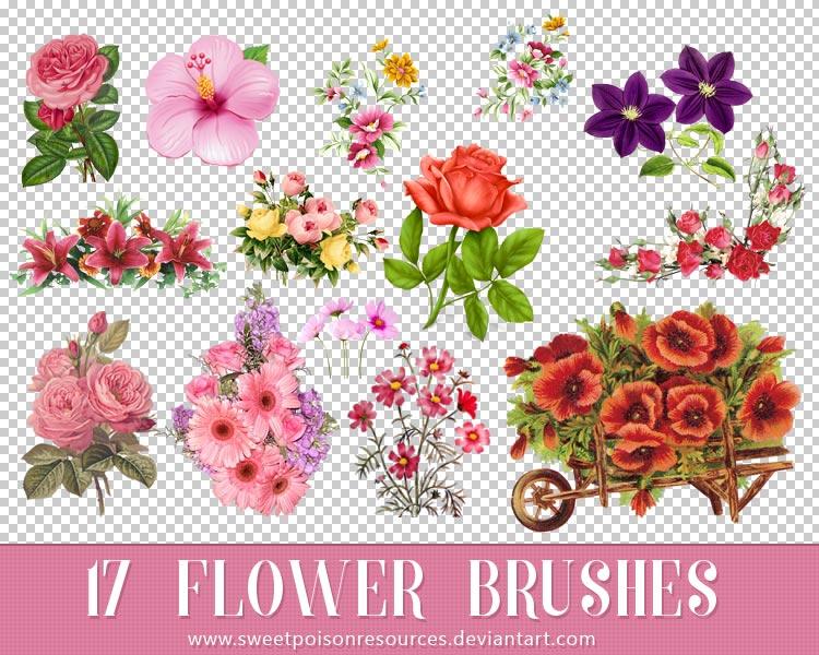 美丽的花朵花卉装饰PS笔刷