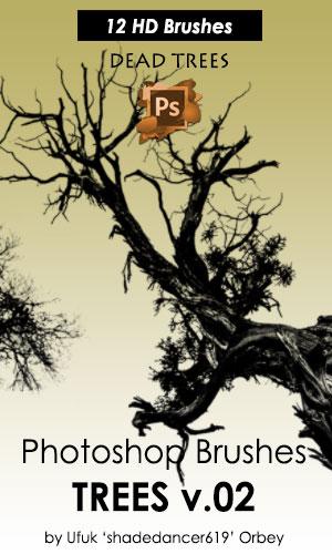 12款高清晰枯树和树木PS笔刷