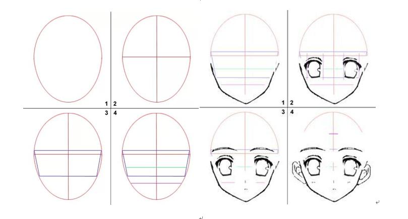 浅谈动漫人物脸型画法及脸部结构比例
