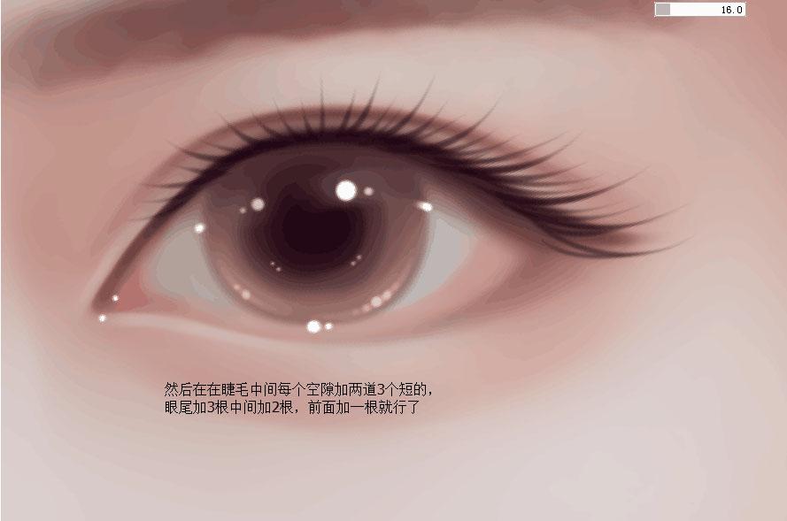 Photoshop繪製人像轉手繪中的漂亮的眼睛