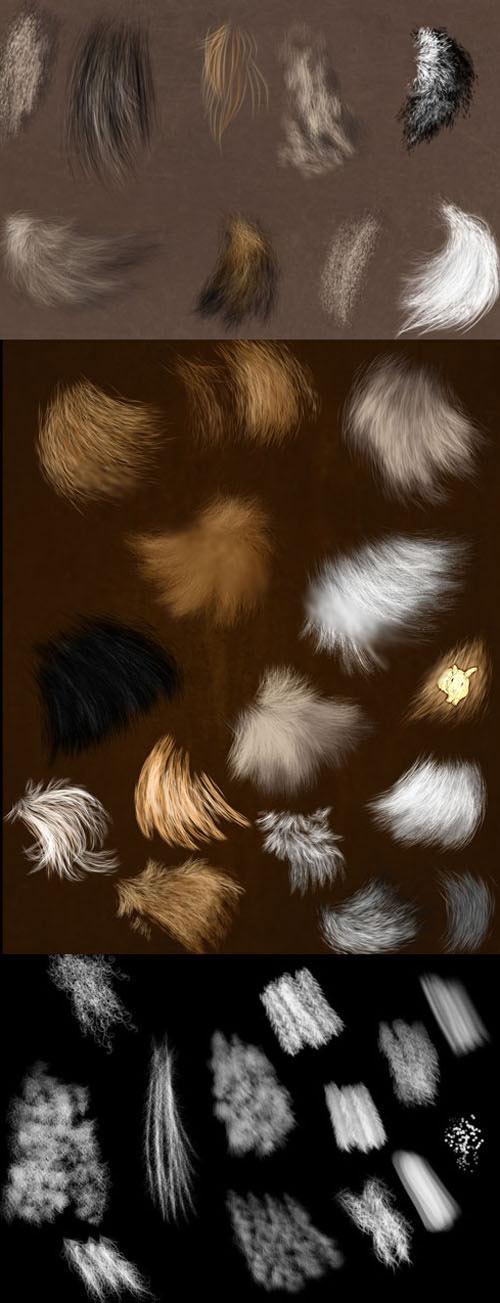 动物皮毛和毛发PS笔刷