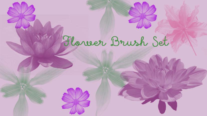 时尚花朵和花卉PS笔刷