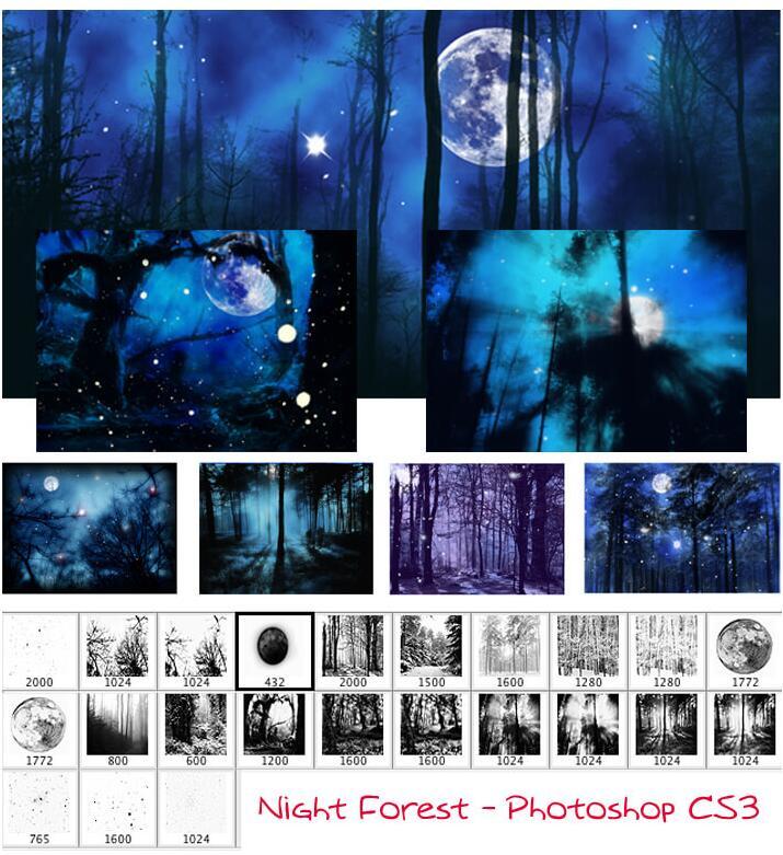 夜晚森林美景PS笔刷