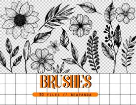 手绘线描花朵和叶子装饰PS笔刷下载列表图片