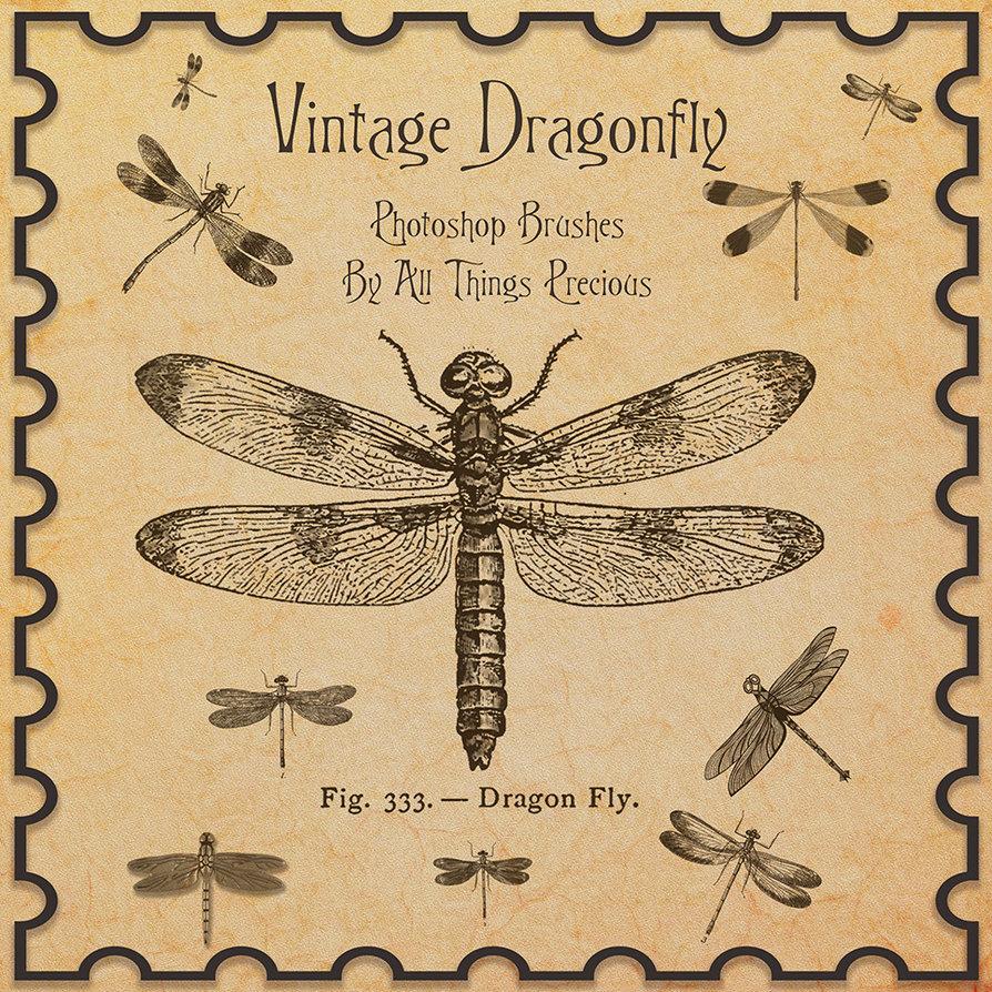 复古蜻蜓和昆虫PS笔刷