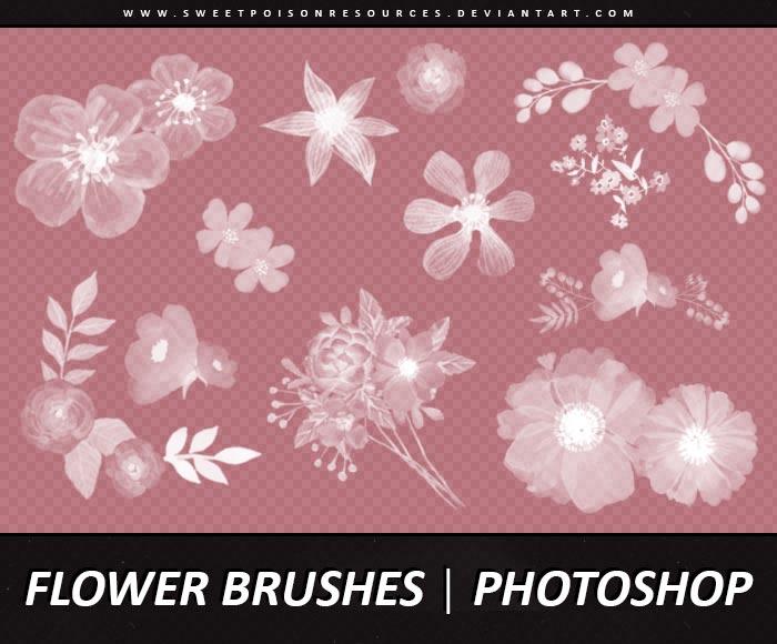 水彩花朵和花卉装饰PS笔刷