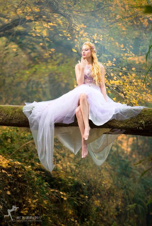 《秋天的童话》深秋森林唯美摄影作品,PS教程,思缘教程网