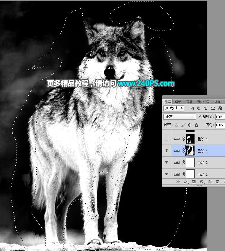 网赚教程软件免费下载_用云南快三安卓app官方网址22270.COMS抠取毛茸茸的雪中灰狼图片教程