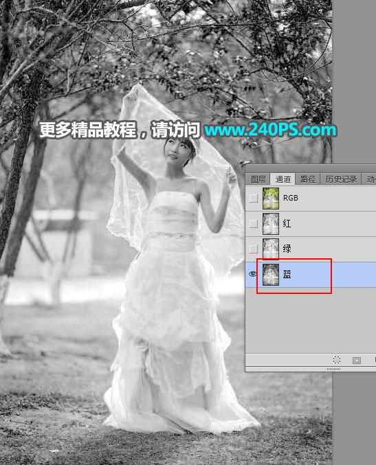 Photoshop去背出披着透明婚紗的新娘