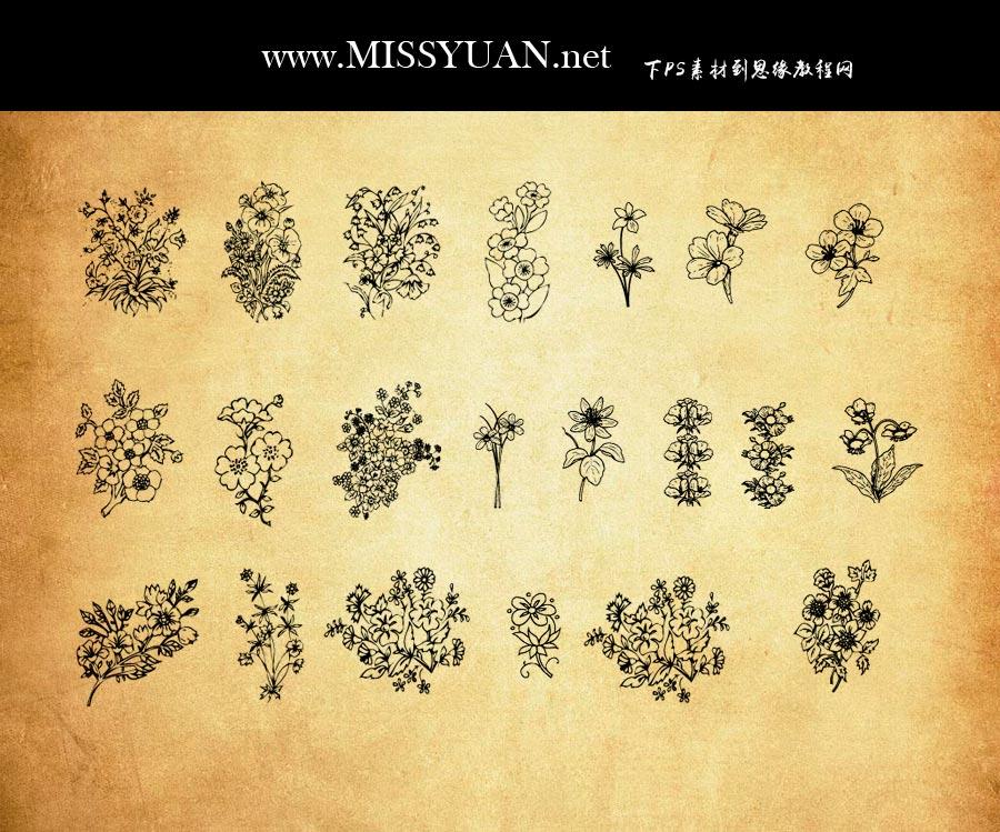 小花朵花枝装饰PS笔刷