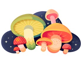 Illustrator绘制磨立体风格的蘑菇插画