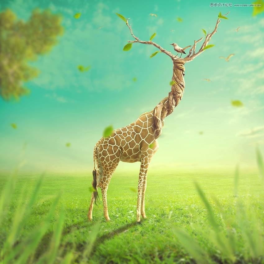 03 photoshop合成创意的长颈鹿和树木头像【待翻译】