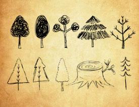 手绘涂鸦树木和小鸟PS笔刷