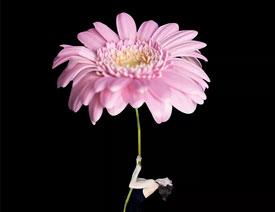 以人像和花朵为主题的创意合成作品