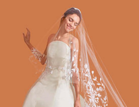 2017最新注册送白菜网完美抠出穿着透明婚纱的新娘